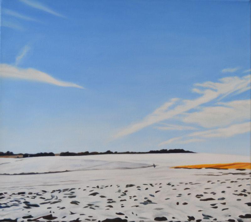 Landschaft 131, 2013, 40x45